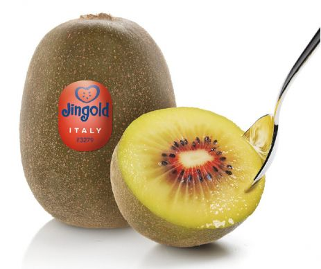 "Der Fruit Logistica Innovation Award ging heuer an ""Oriental Red – Red Kiwifruit"" von der Firma Jing"