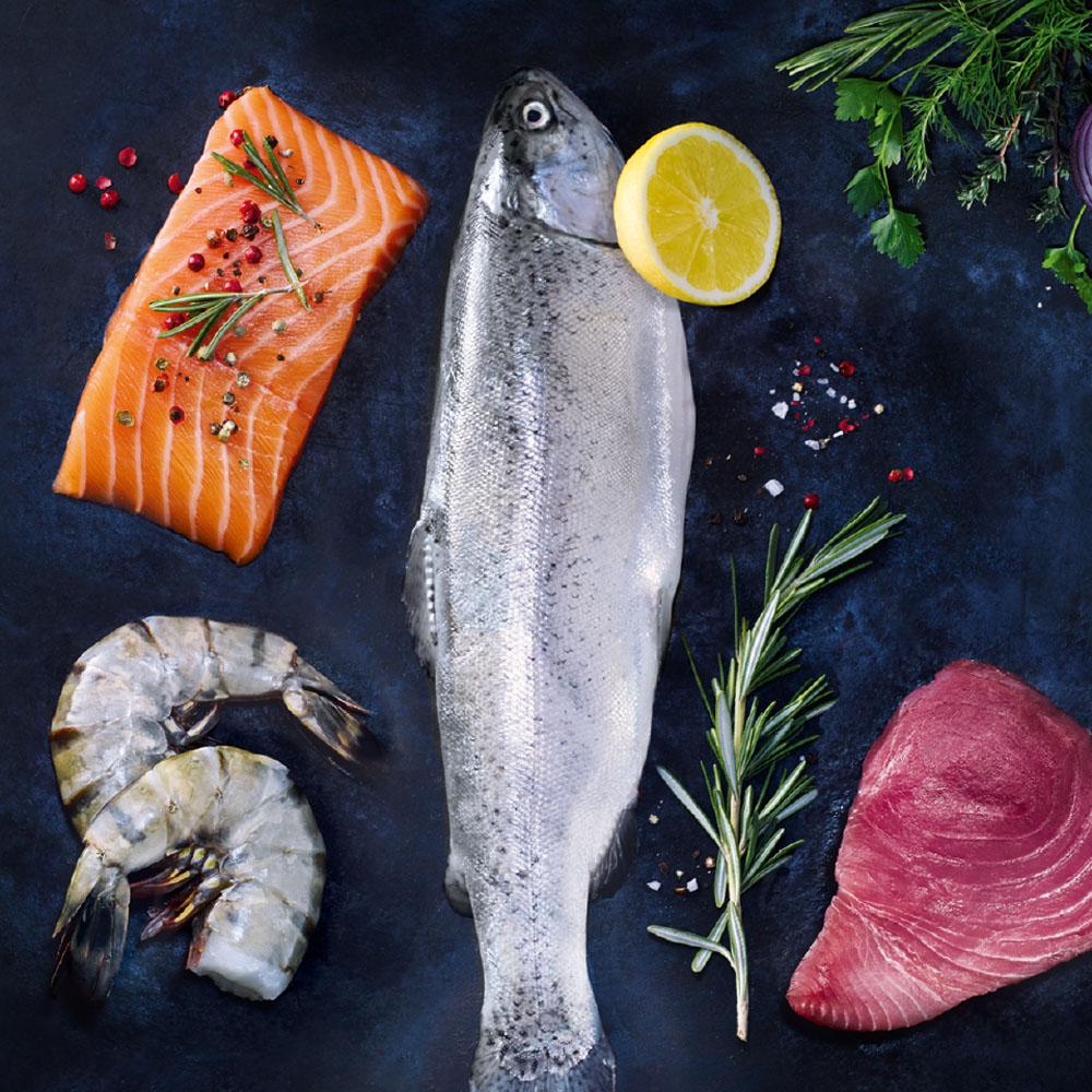 Hochwertiger Thunfisch Loin | NORDSEE